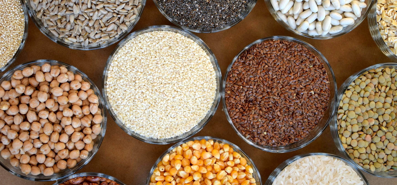 Rotação de culturas: benefícios para o solo, vantagens para o agricultor
