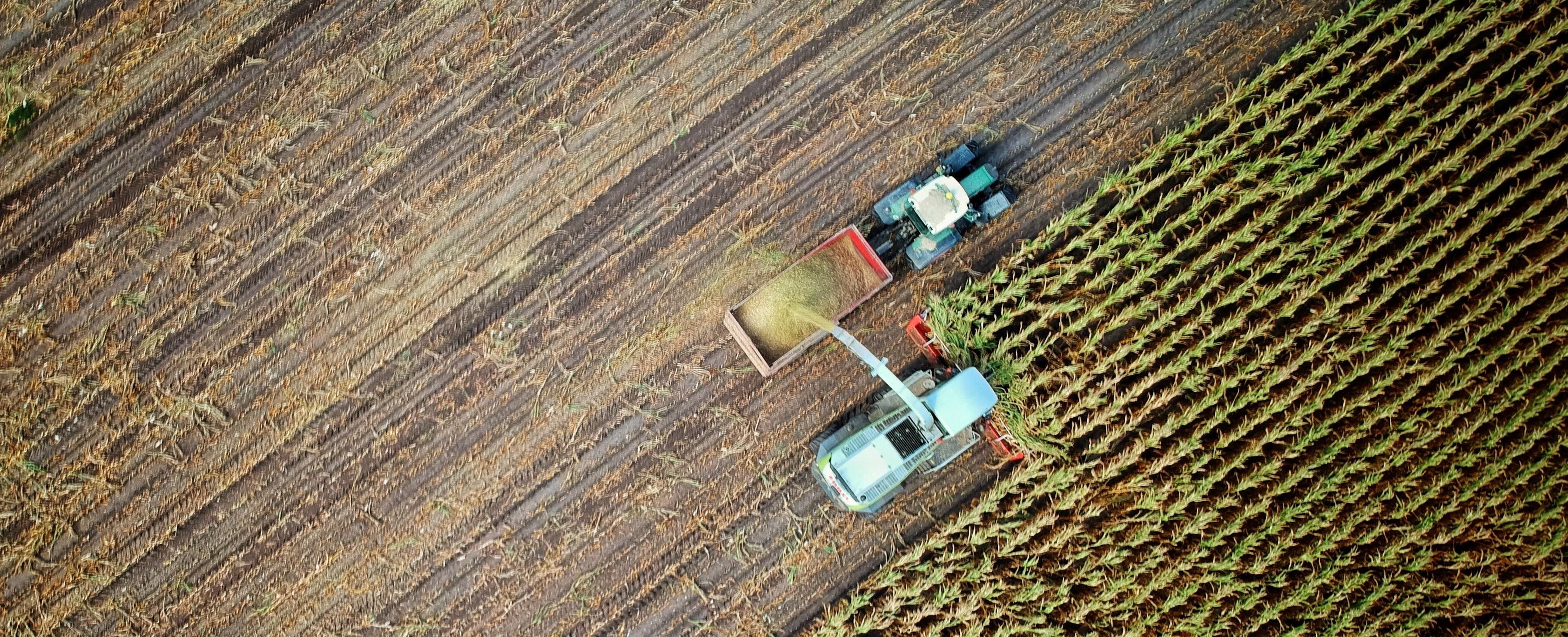 Seguro rural é investimento fundamental para o futuro do agro