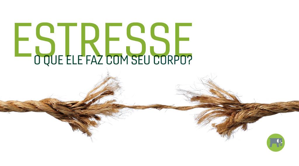 estresse_capa